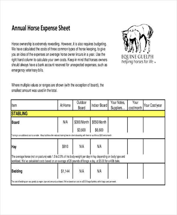 annual expense sheet