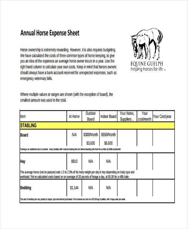 annual expense sheet1