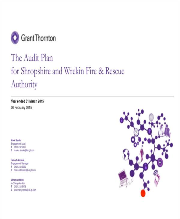 audit test plan2