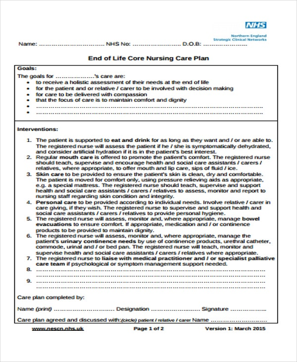 Nursing Care Plan Template Nursing Care Plan Template Plan