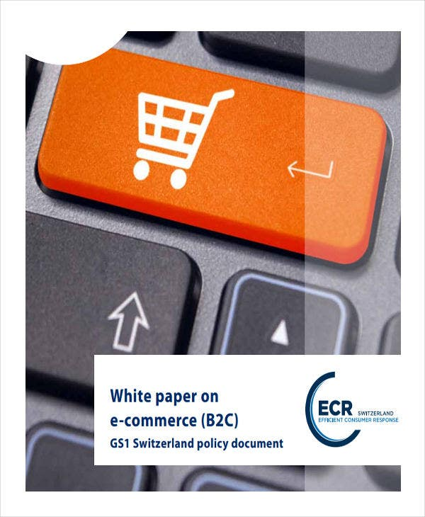 ecommerce white paper example1