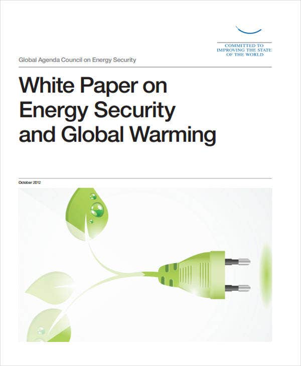 energy security white paper