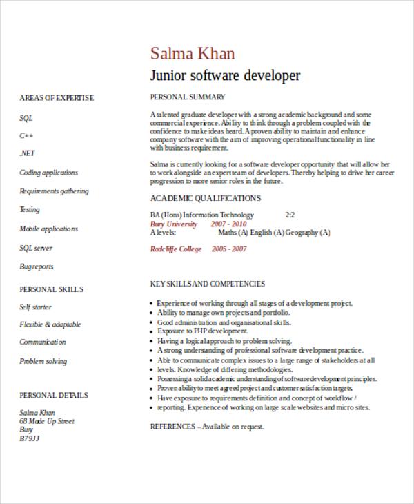 entry level it developer resume1