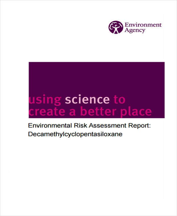 environmental risk assessment report