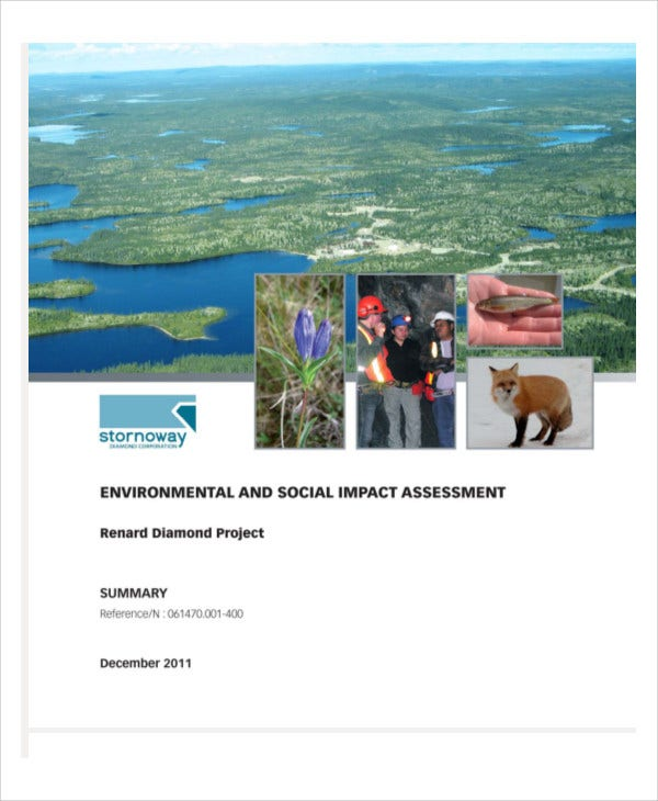 environmental social impact assessment