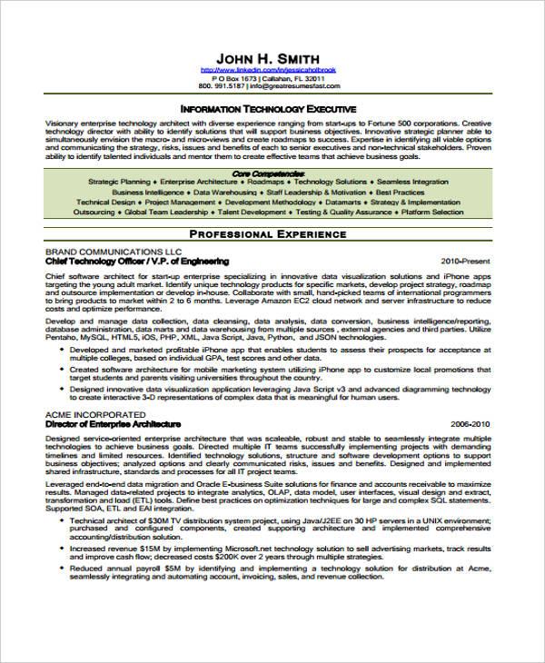 executive curriculum vitae