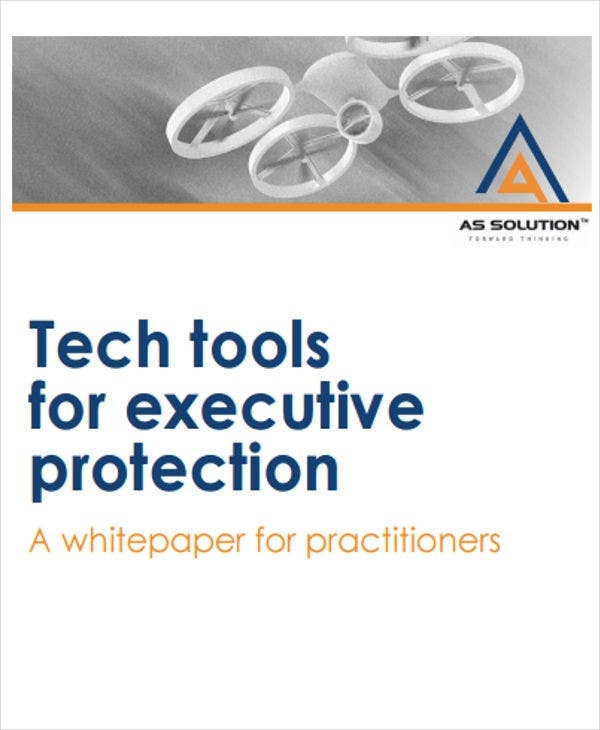 executive protection white paper