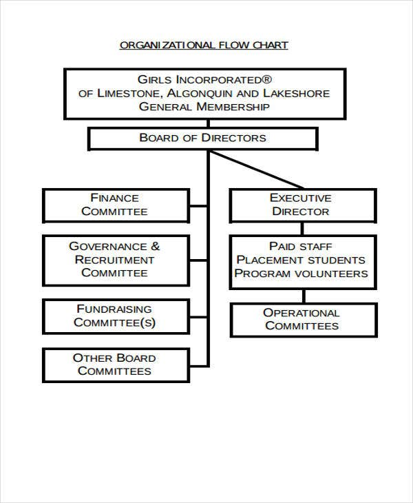 flow chart of organization example