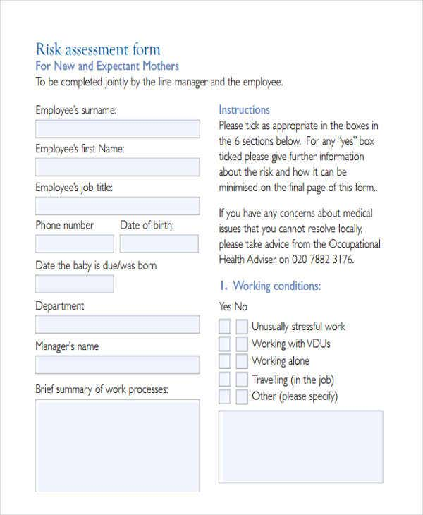 Free Risk Assessment Forms  Free  Premium Templates