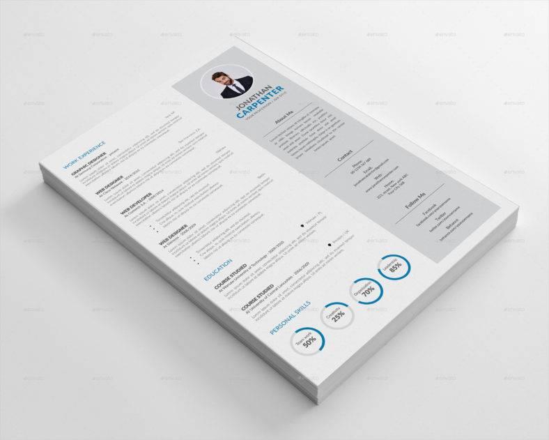 graphic designer professional resume 788x631