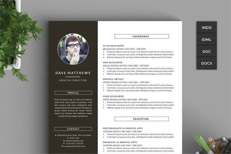 hipster-resume