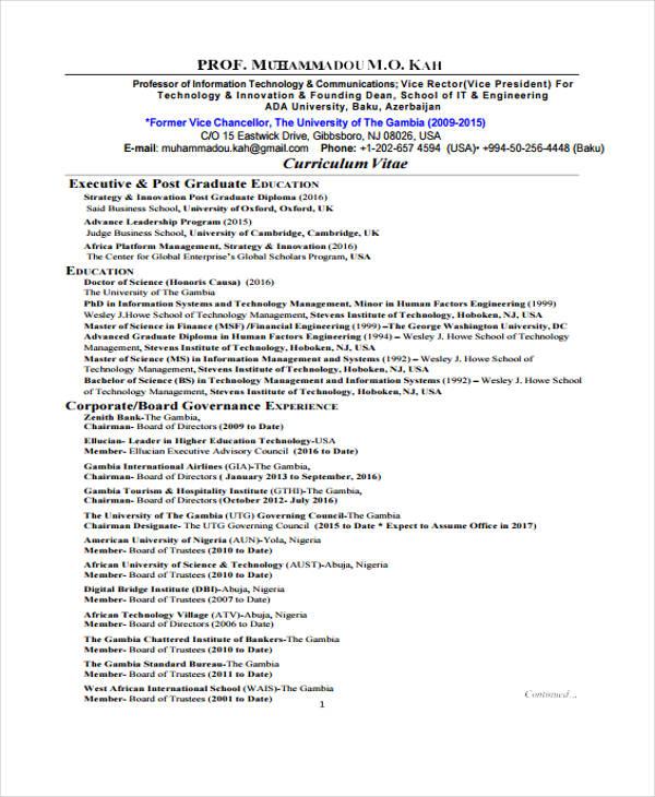 it executive resume pdf1