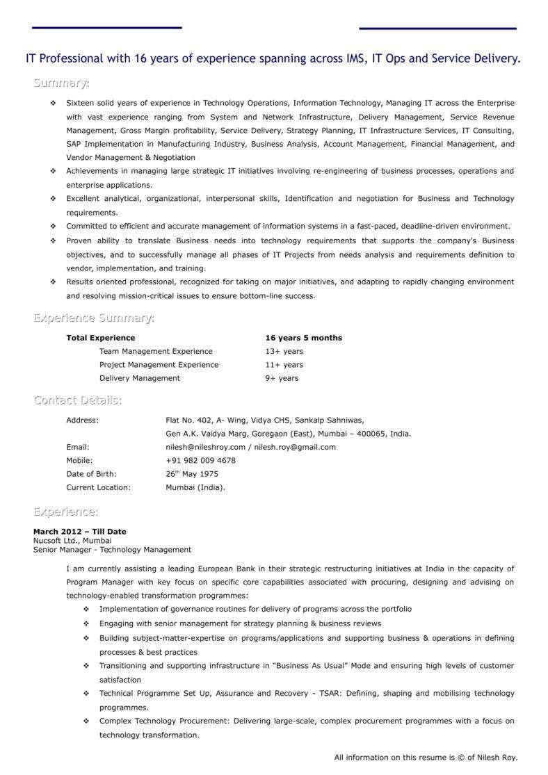 it-proffesional-cv-template-1