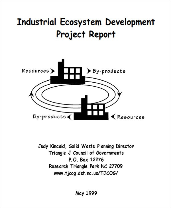 industrial ecosystem project report