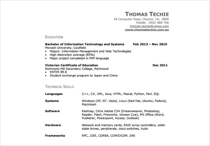 information technology professional resume