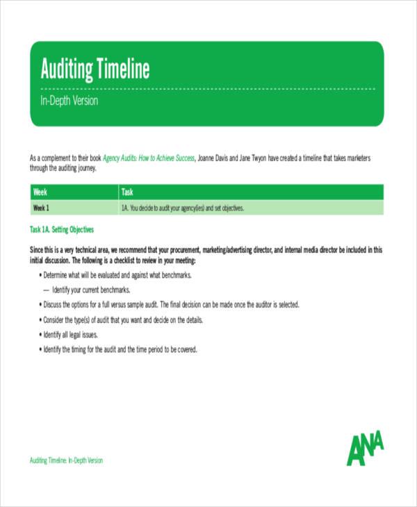 internal audit timeline