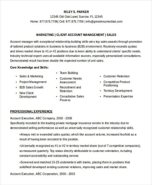 marketing account executive resume2