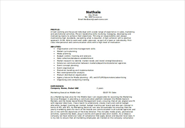 marketing executive resume example1