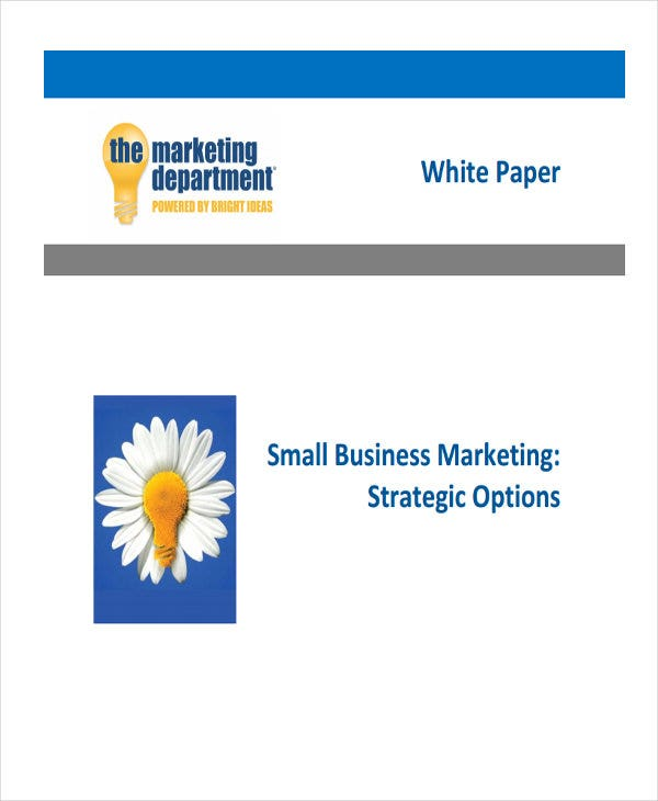 marketing strategy white paper