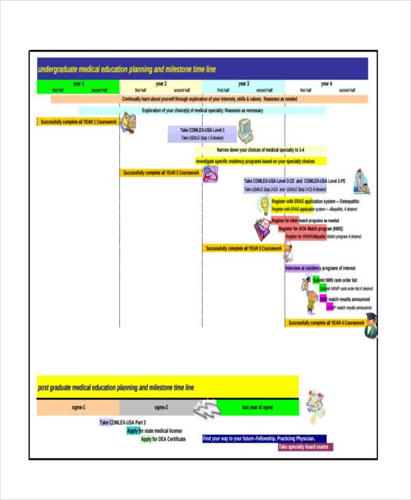 medical student timeline