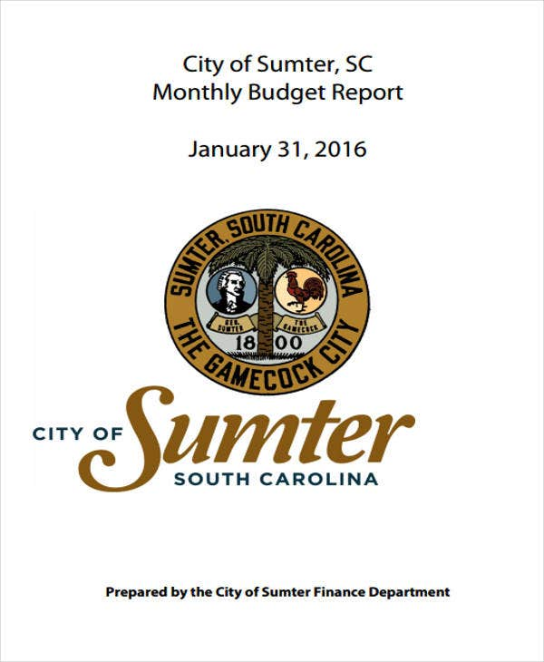 monthly budget report example