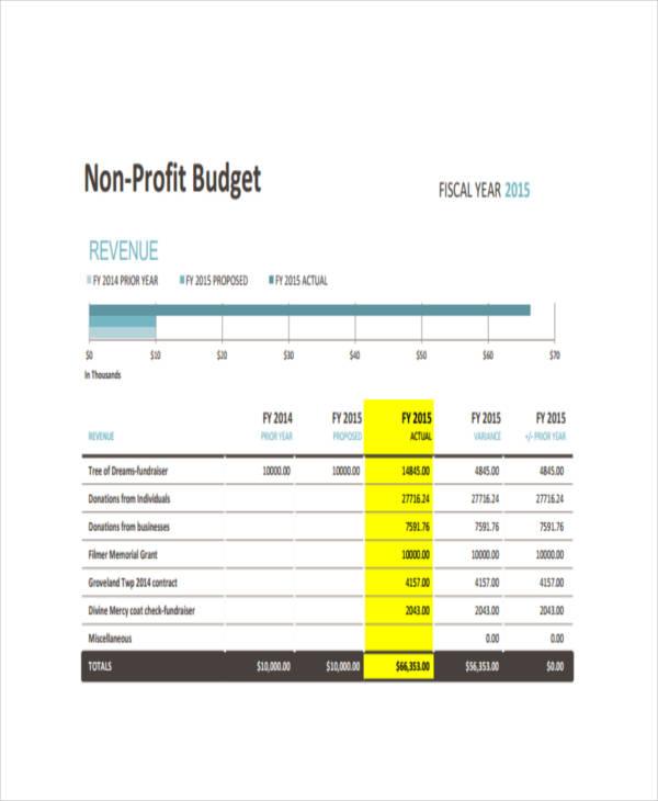 Nonprofit Budget Templates  Pdf  Free  Premium Templates