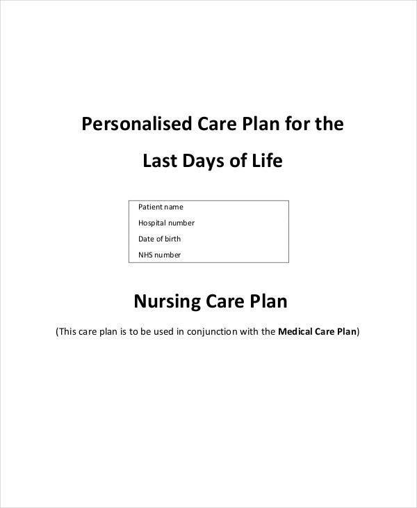 Care Plan Templates   Free Samples Examples Format Download