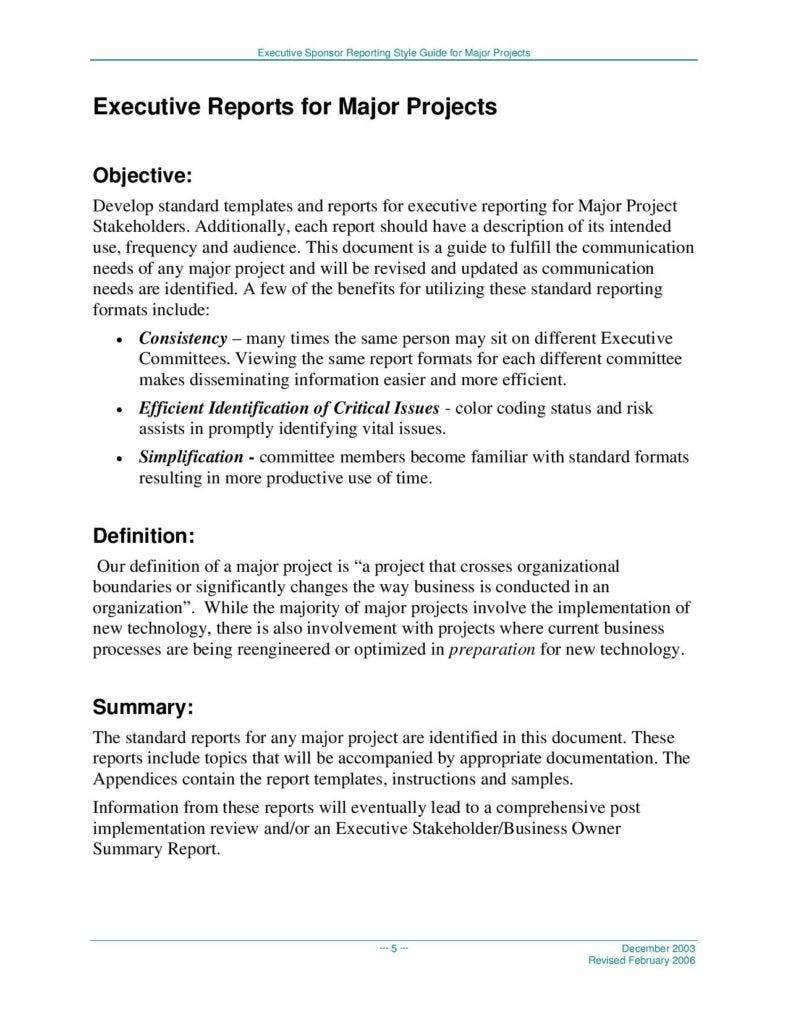 project-executive-report-page-005