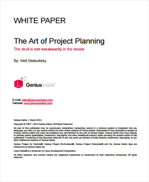 project plan white paper1