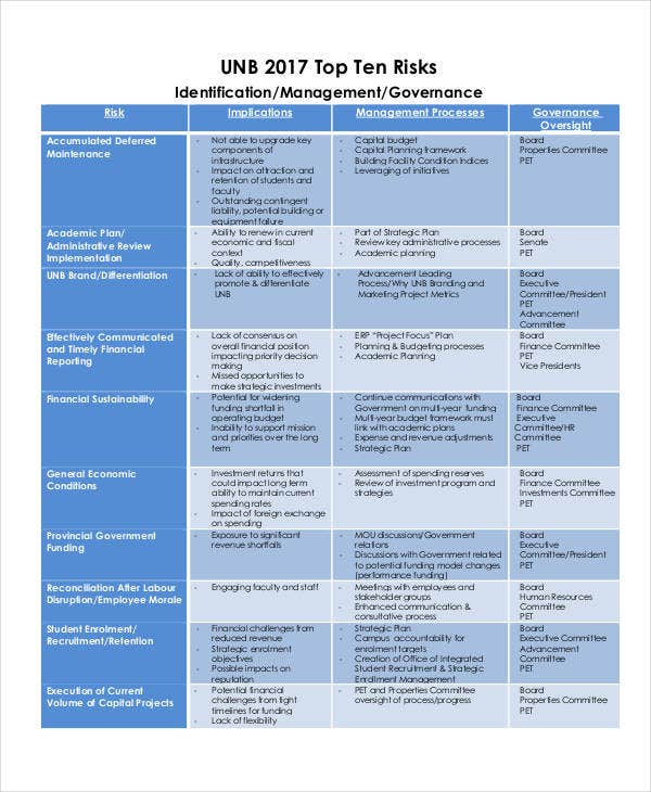 project risk management report