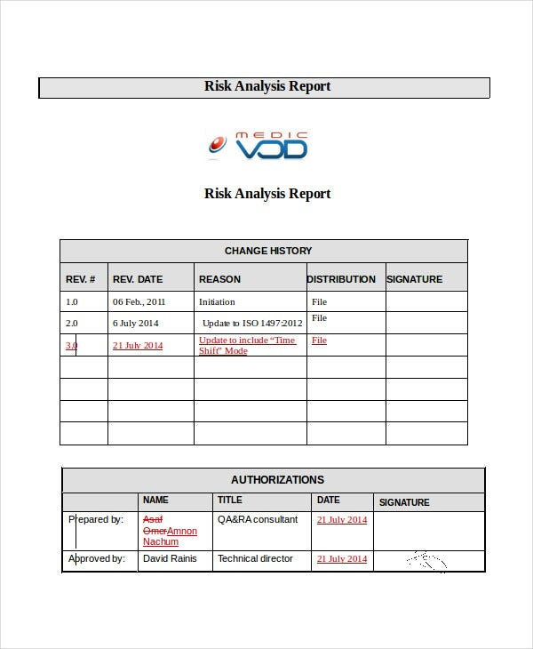 risk analysis report1