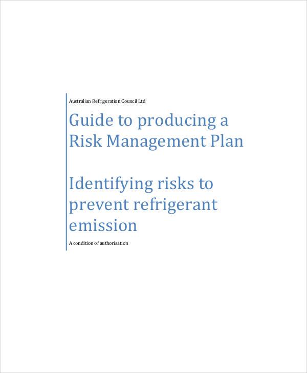 risk management plan sample1
