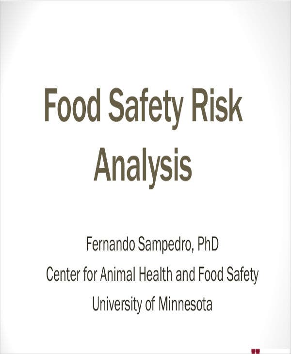 safety risk analysis