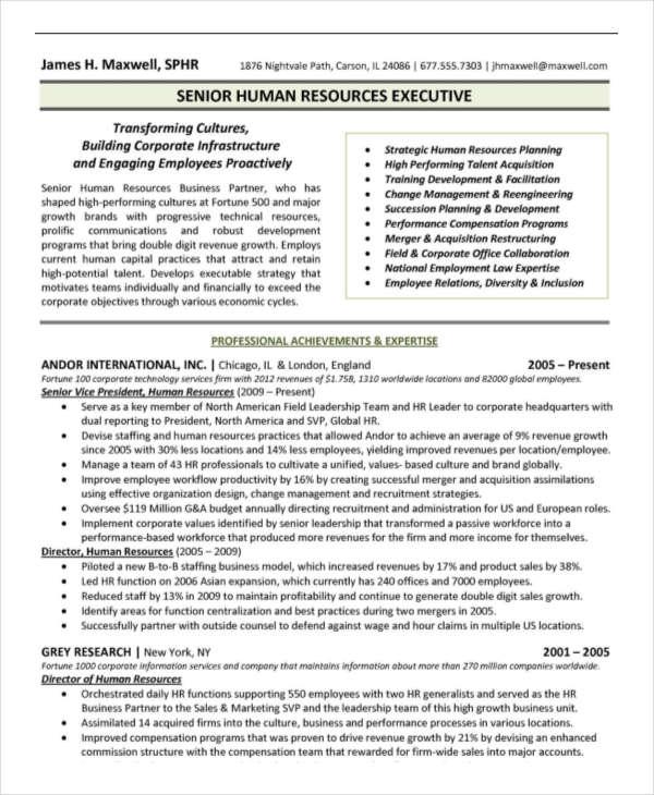 17  executive resume templates