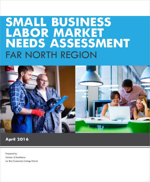 small business needs assessment