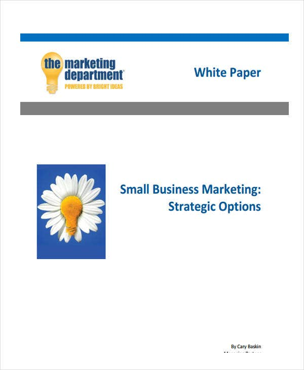 small business white paper1