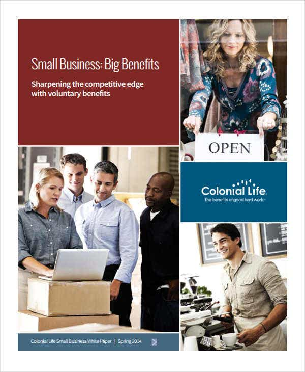 small business white paper4