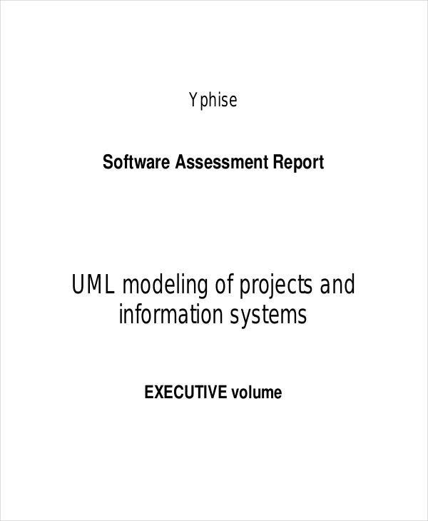 software project assessment report