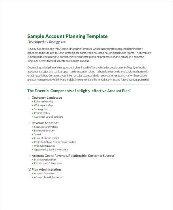 7 account plan templates free sample example format download