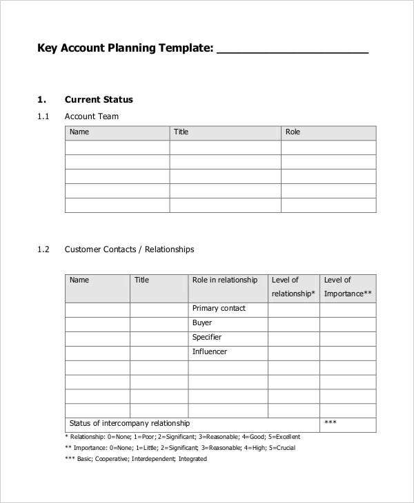 Strategic Account Plan Templates Free Sample Example Format