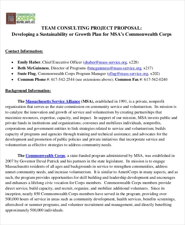 team consulting proposal