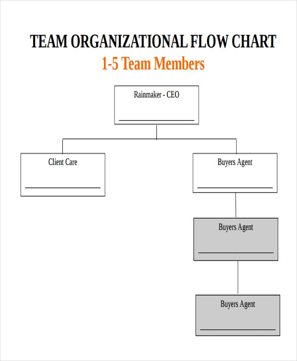 team organizational flow chart