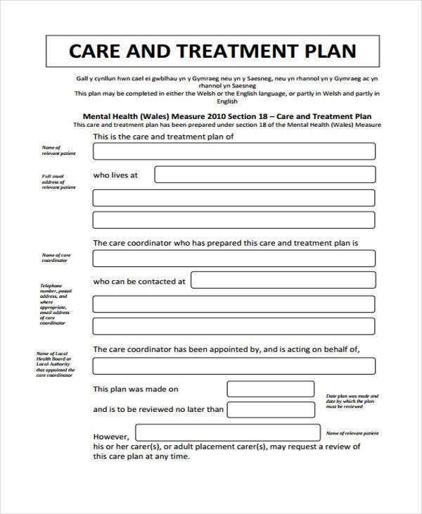 Treatment Care Plan Details File Format