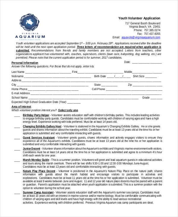 youth volunteer application