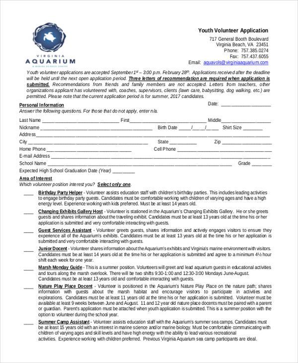 41+ Application Templates in PDF | Free & Premium Templates