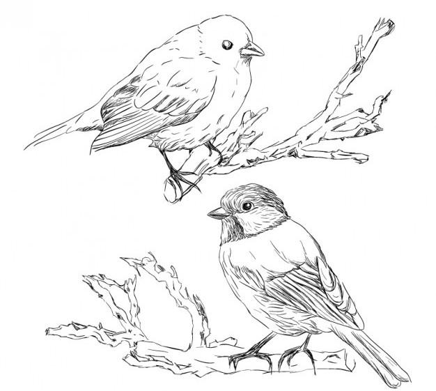 fp-bird-retro-hand-drawn-vector_23-2147496443