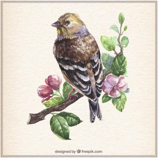 Watercolor Vintage Bird on Branch Illustration