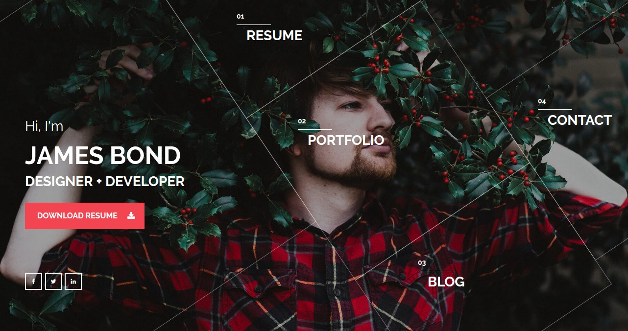 20+ VCard and Personal Page Website Themes for CVs and Resumes