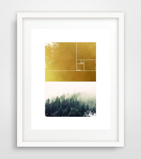 Modern Tree Photography Poster