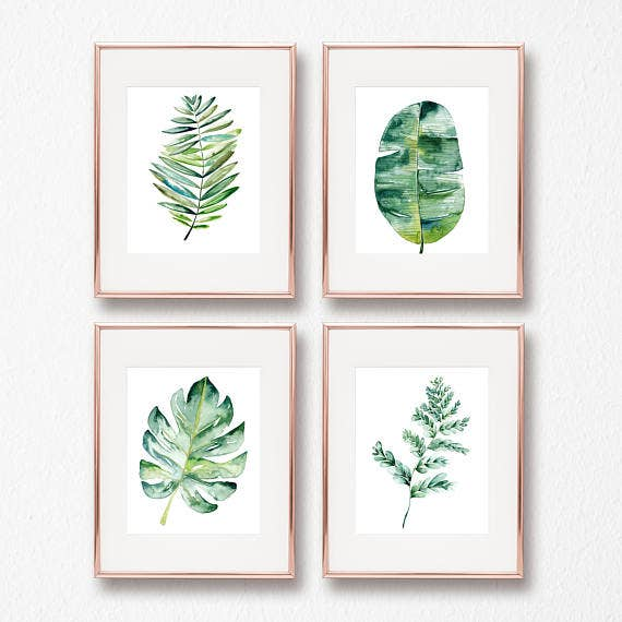 Watercolor Fern Illustration